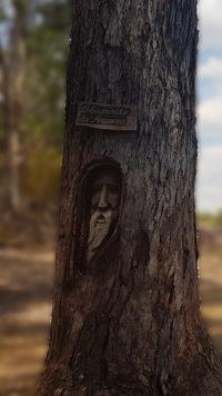 Escultura de rosto de um mago feita em eucalipto denominada espírito da floresta