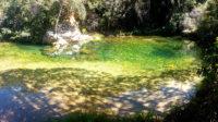 Piscina natural com água transparente que fica no meio do caminho para cachoeira do Segredo na Chapada dos Veadeiros